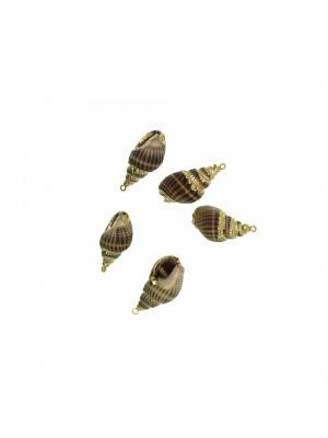 Conchiglia a Lumachina, 13x26 mm., con un anellino tondo chiuso, colore NATURALE
